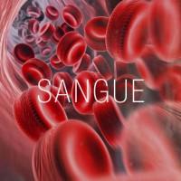 o-sangue-que-nos-salva-tudo-comeca-no-hemocentro